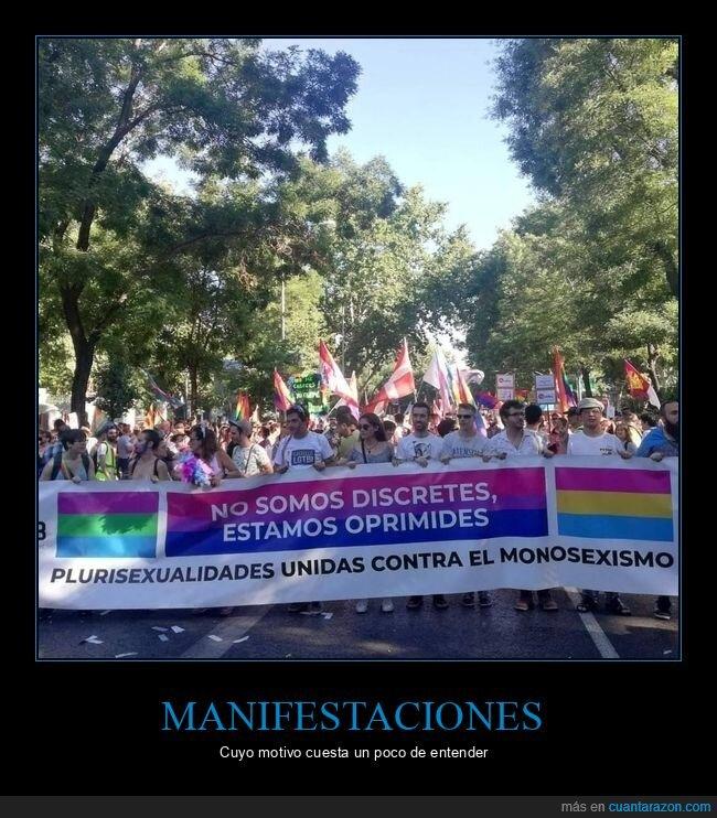 manifestación,monosexismo,plurisexualidades,wtf