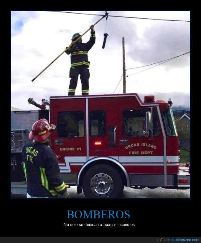 bomberos,wtf
