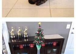 Enlace a Gente que encontró la manera de proteger sus árboles de Navidad de sus mascotas