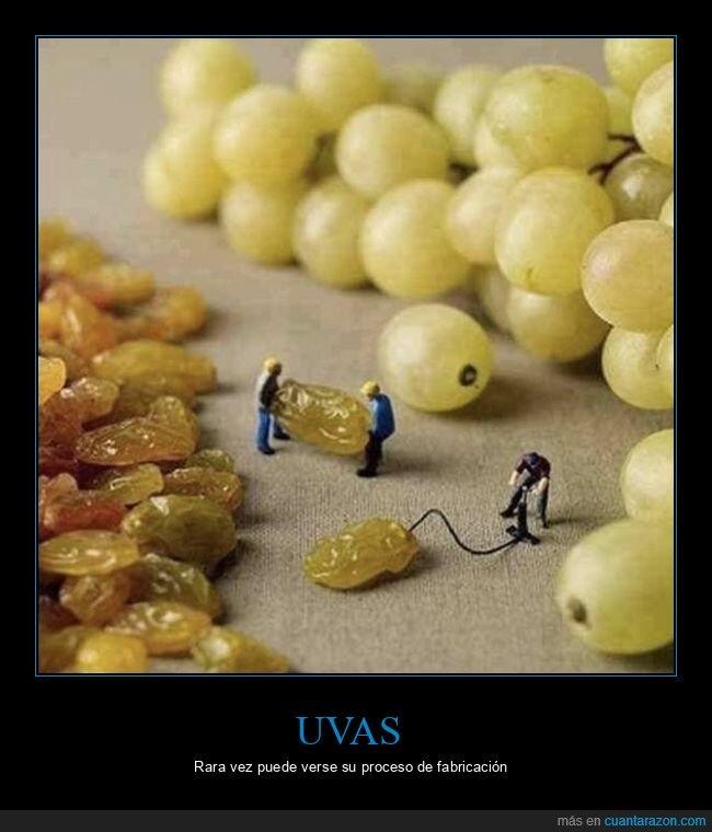 hinchando,pasas,uvas