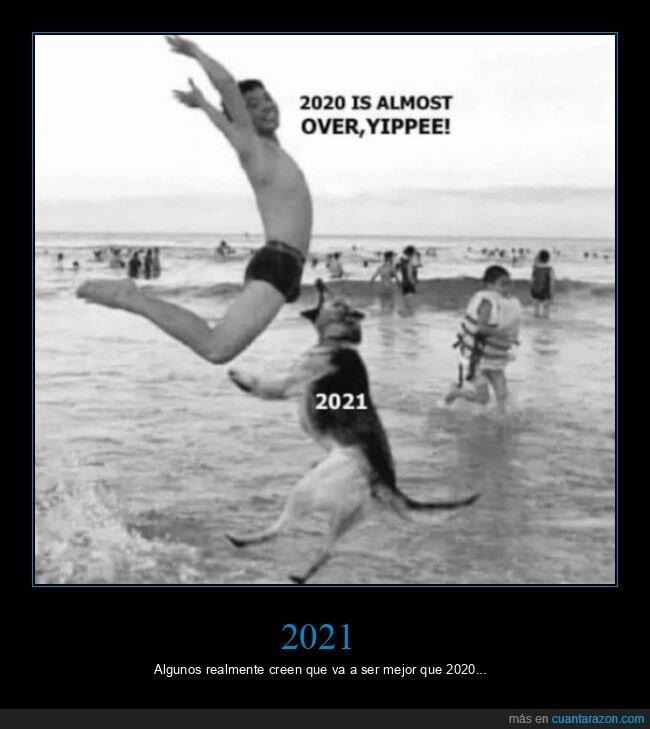 2020,2021,perros