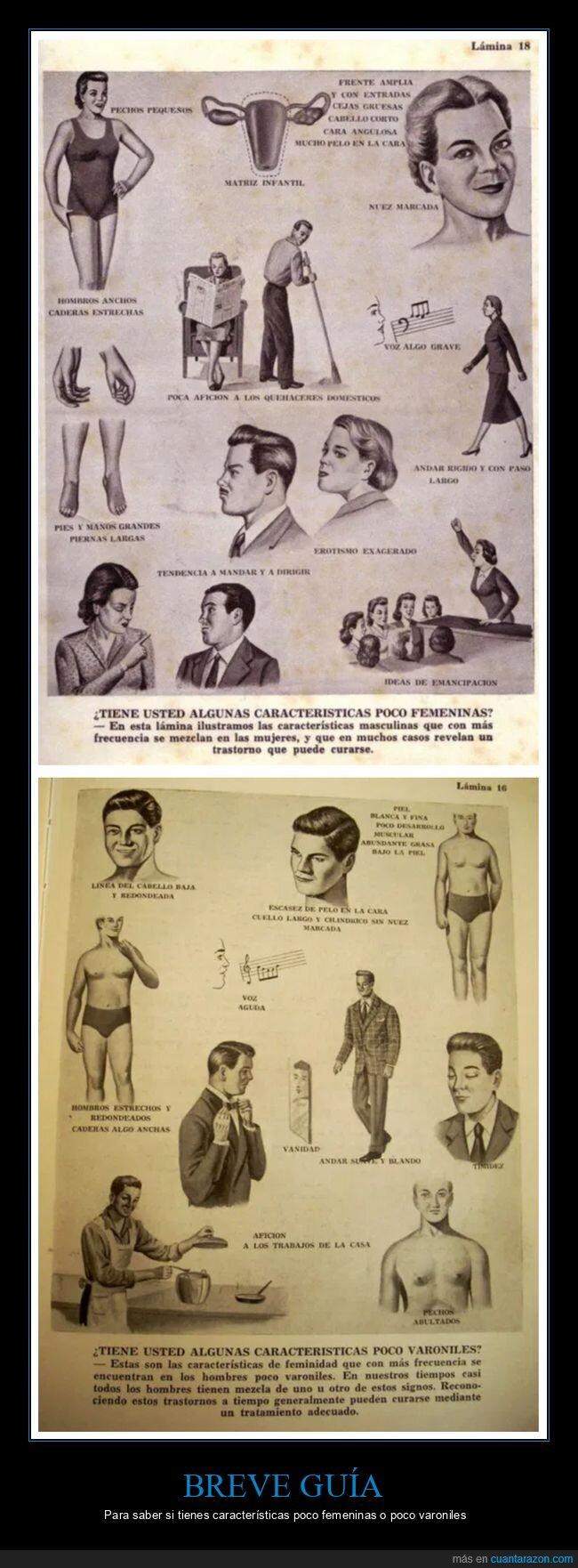 características,femeninas,retro,varoniles,wtf