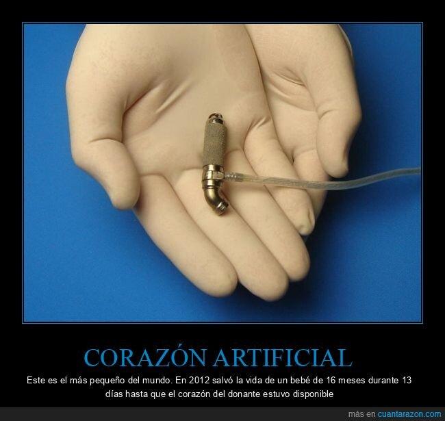 artificial,corazón,pequeño
