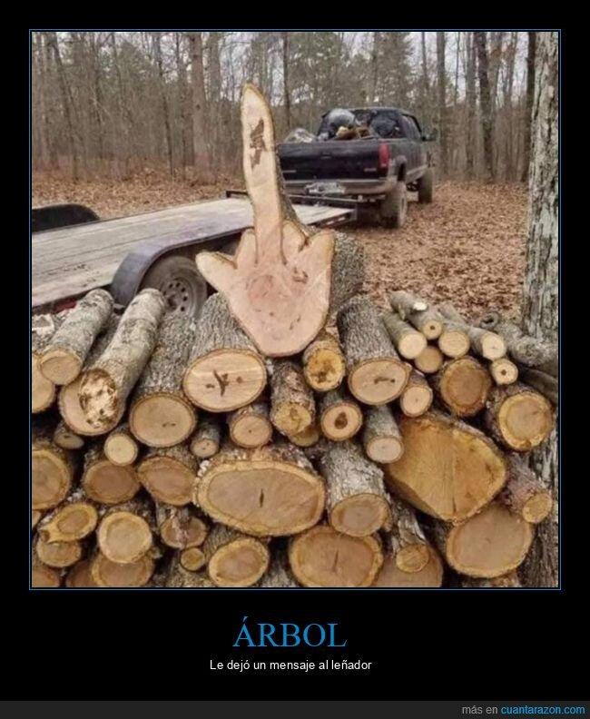 árbol,dedo,leña,tronco,wtf