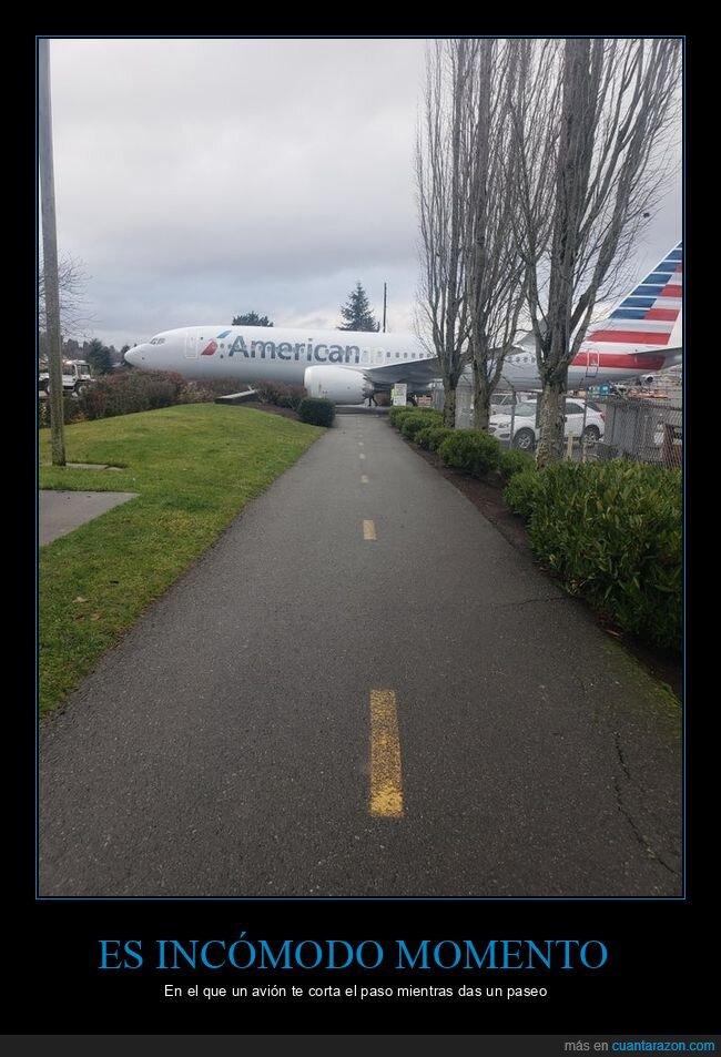 avión,paseo,wtf