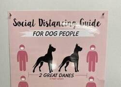 Enlace a Perros como unidad de medida