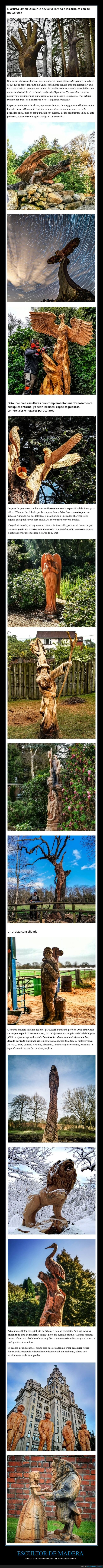 árboles,escultor,madera