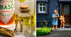 Enlace a Artista transforma cosas comunes en pequeños mundos en miniatura y es increíble