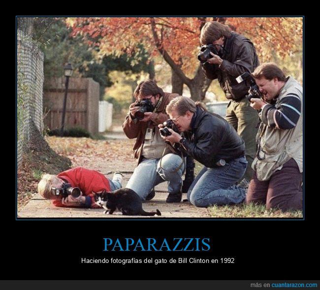 bill clinton,gato,paparazzis