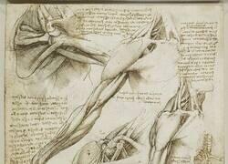 Enlace a Los bocetos de Da Vinci