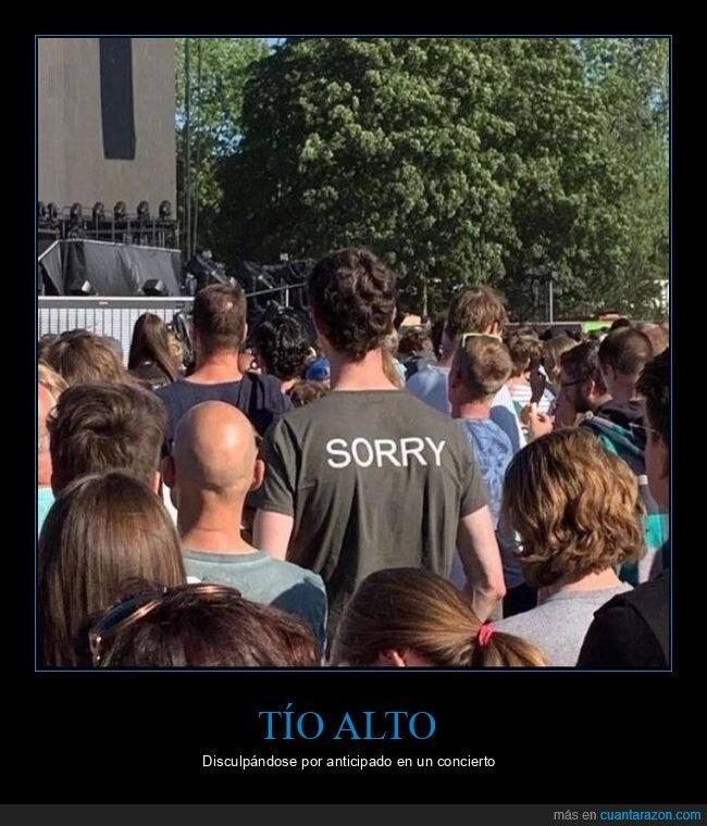 alto,camiseta,concierto,perdón