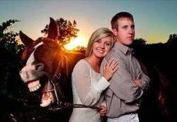 Enlace a Pues fuera bromas, el caballo parece el más simpático