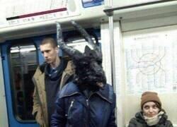 Enlace a Un viaje en metro inolvidable