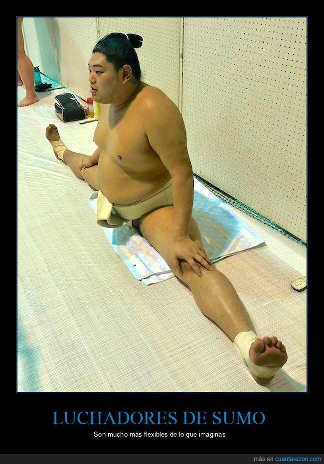 flexibilidad,luchadores,sumo