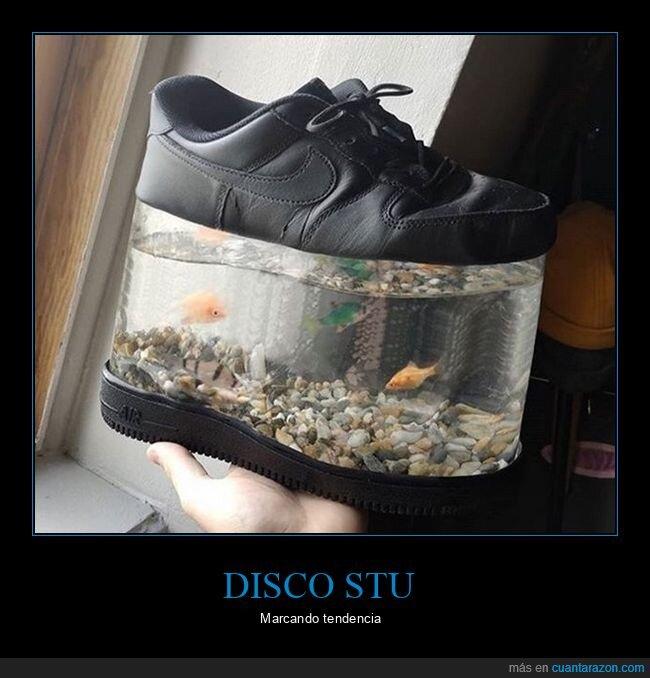peces,plataforma,wtf,zapatilla