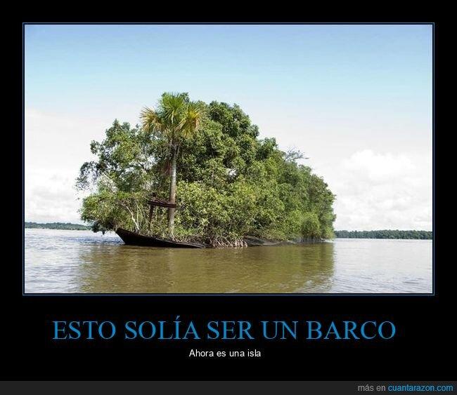 barco,isla,vegetación