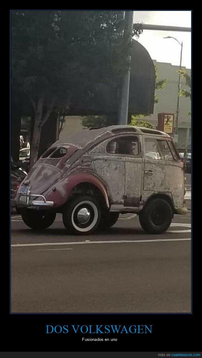 coches,escarabajo,furgoneta,fusionados,volkswagen,wtf