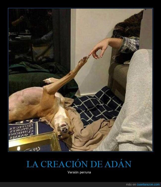 la creación de adán,perro