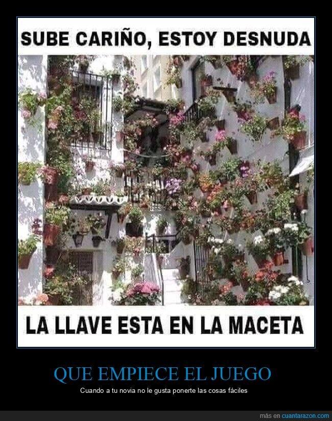 llave,macetas,wtf