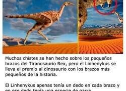 Enlace a Los dinosaurios más raros que jamás hayan existido