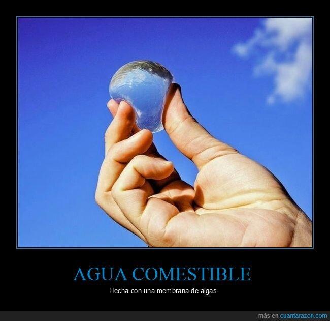 agua,comestible,membrana de algas