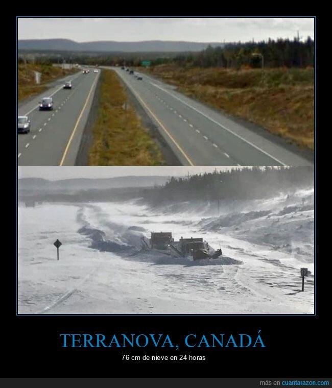 canadá,nieve,terranova