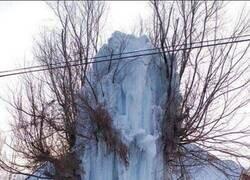 Enlace a Una boca de incendios que no soportó el duro invierno
