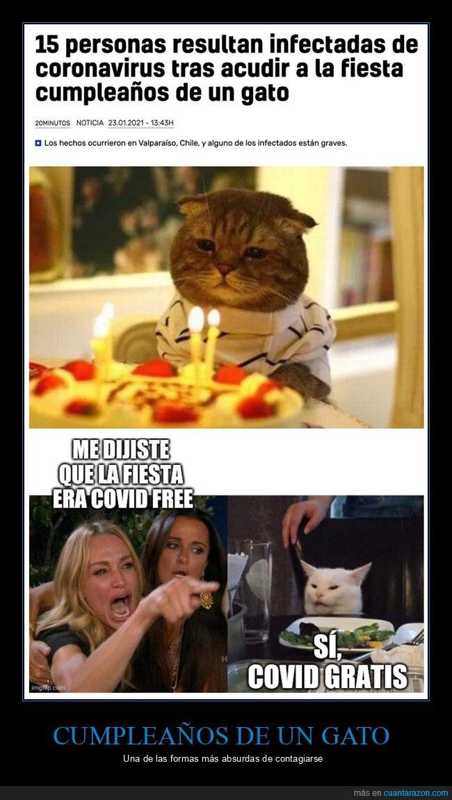 coronavirus,cumpleaños,gatos,gritando al gato