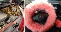 Enlace a Imágenes de cosas inesperadas que los mecánicos se encontraron en los coches