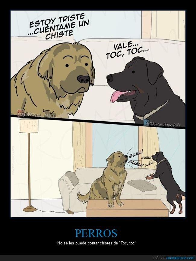 chiste,perros,toc toc