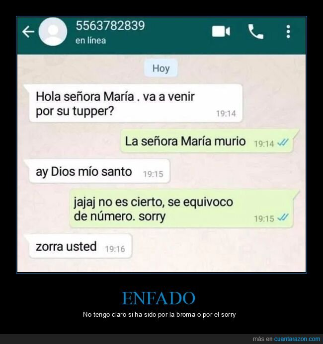 equivocarse,trolling,whatsapp,wtf