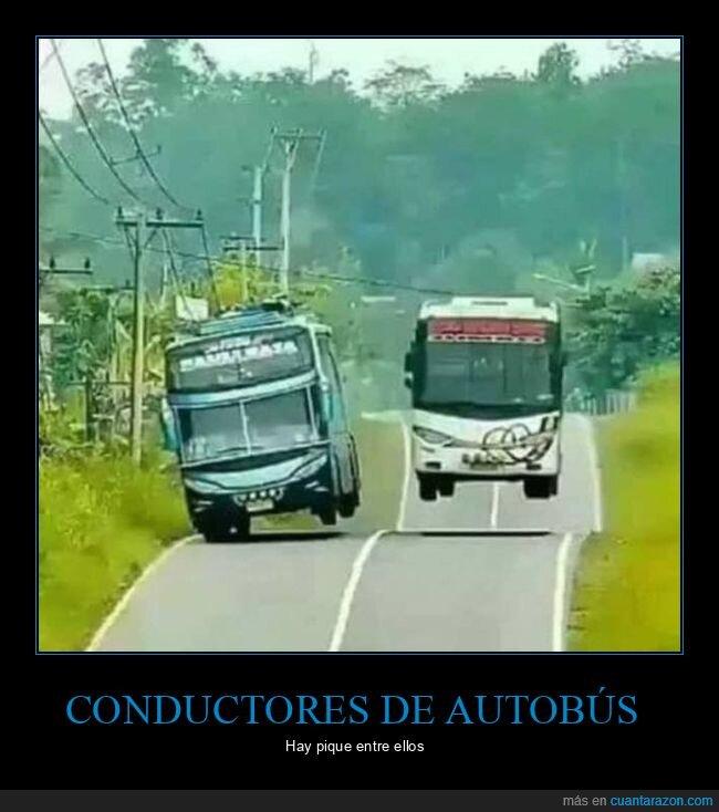 autobuses,wtf