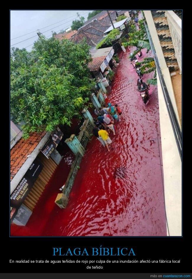 agua,inundación,roja
