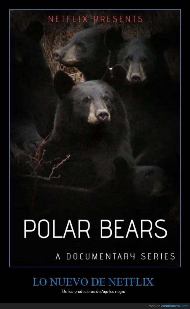 netflix,osos,osos polares