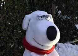 Enlace a Brian de nieve