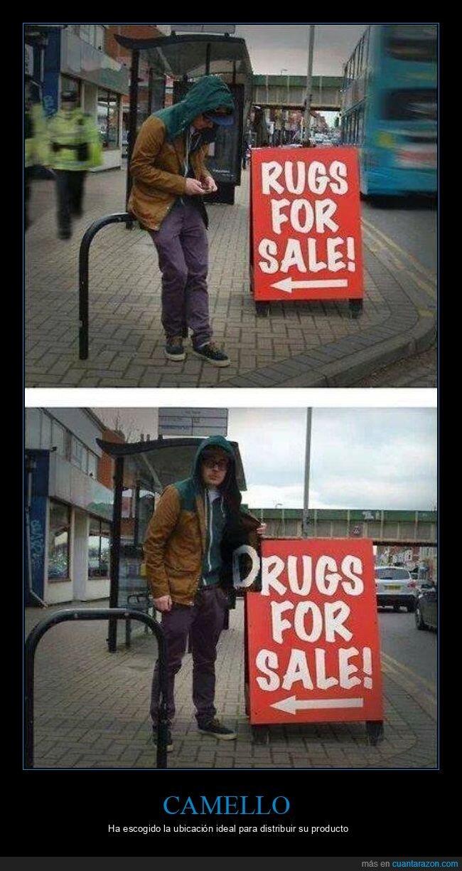 camello,cartel,drogas