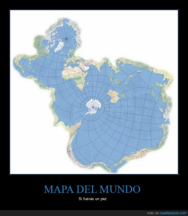 mapa,mundo,océanos,peces