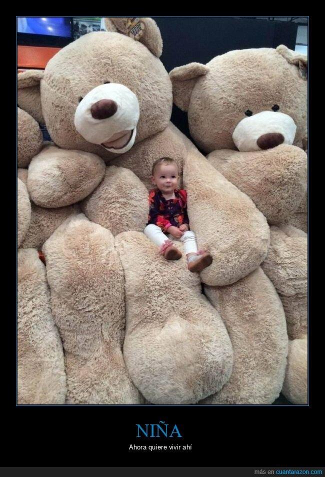 gigantes,niña,osos
