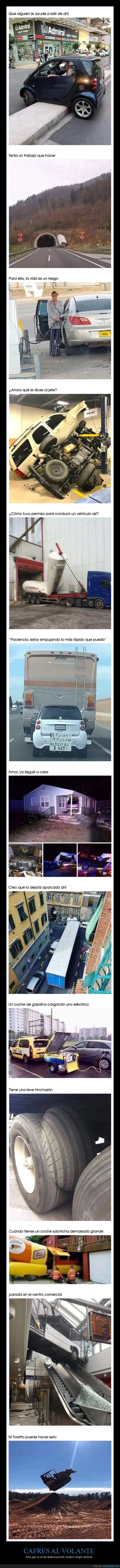 coches,conductores,faisl,wtf