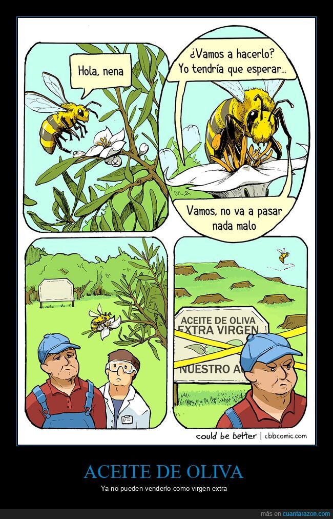 abejas,aceite,flor,virgen extra