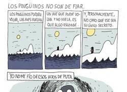 Enlace a Nunca te fíes de un pingüino