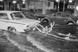 Enlace a Sacando partido a la inundación