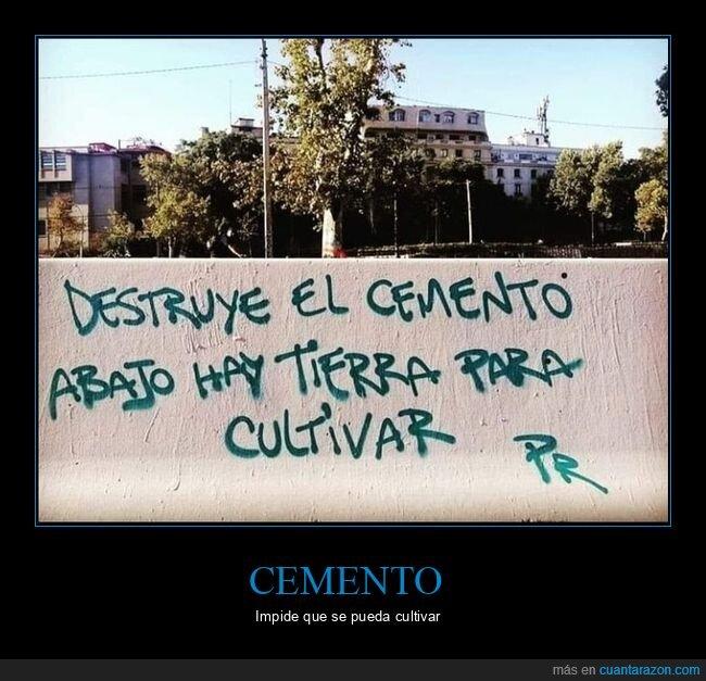 cemento,ciudad,naturaleza