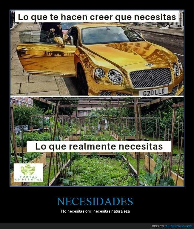consumismo,naturaleza,necesitar