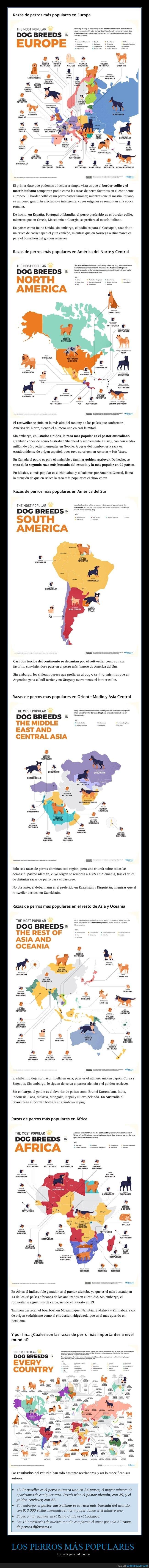 países,perros,populares