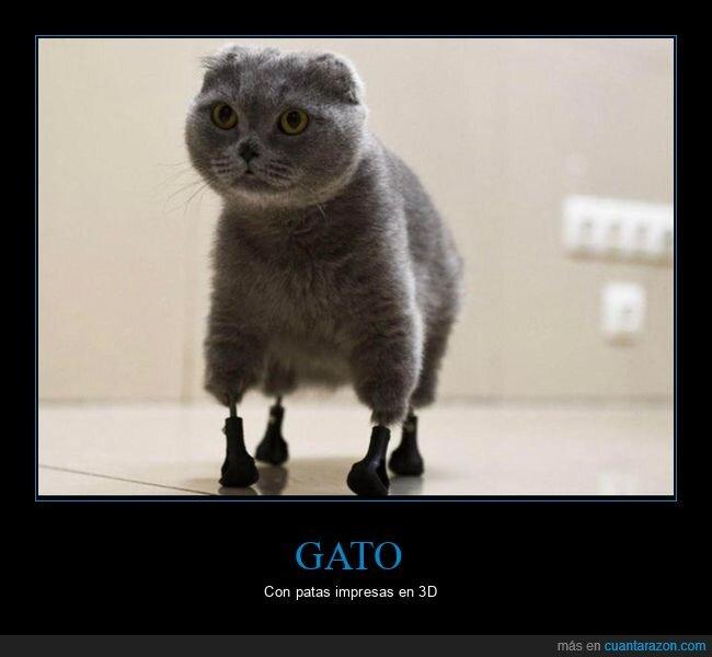 gato,impresión 3d,patas