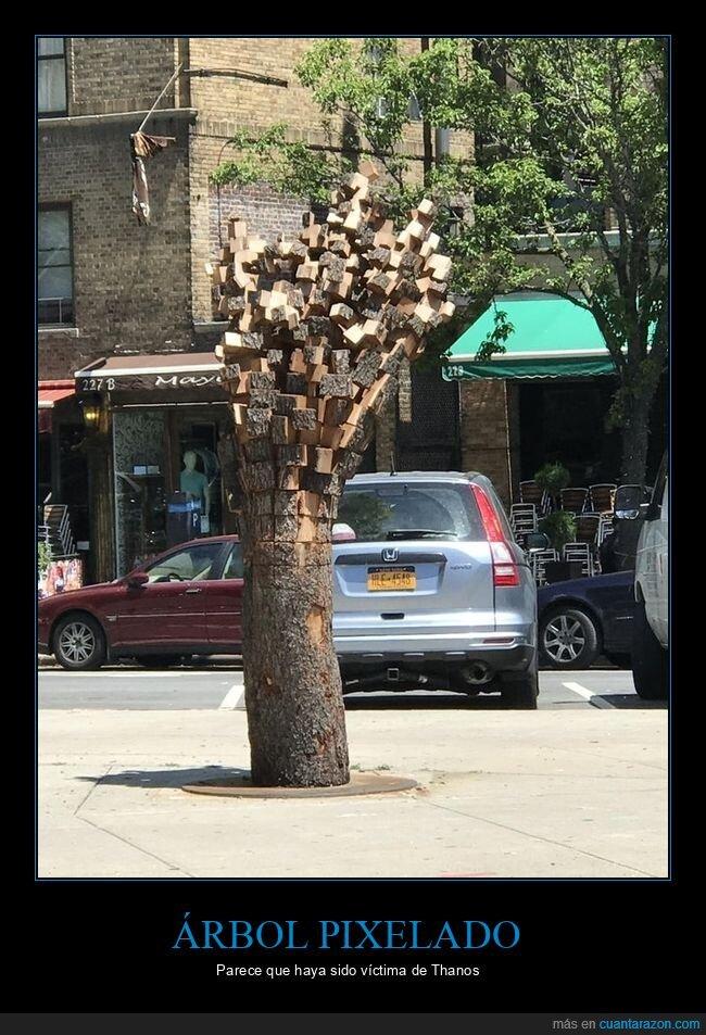 árbol,wtf