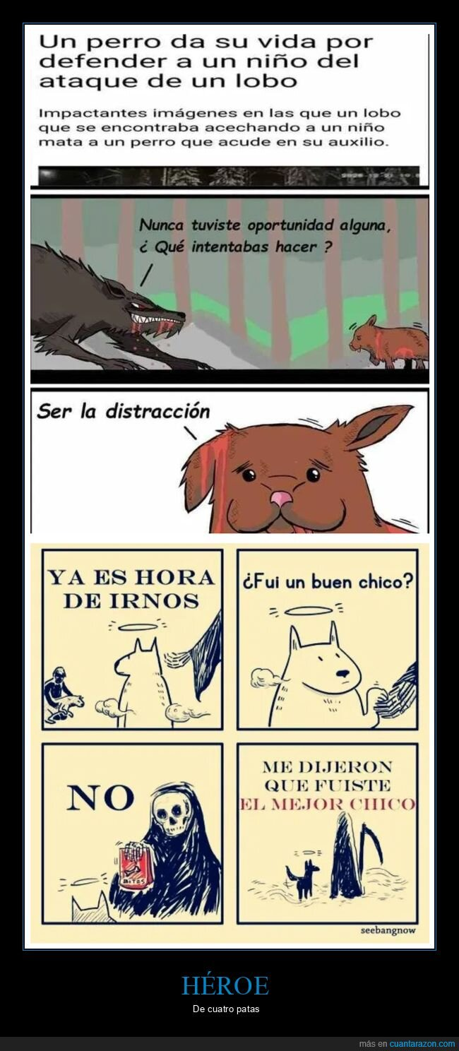 defender,lobo,niño,perros