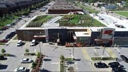 Enlace a Supermercado autosuficiente