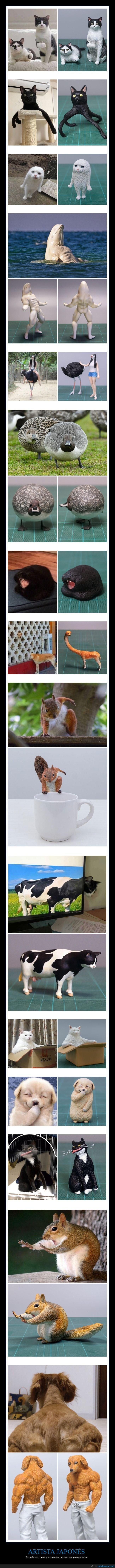 animales,esculturas